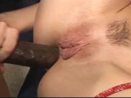 Amadores no sexo quente no sofá